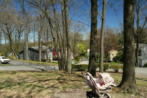 Lilac Ln @ Woodside Dr (unsigned), 5/4/13